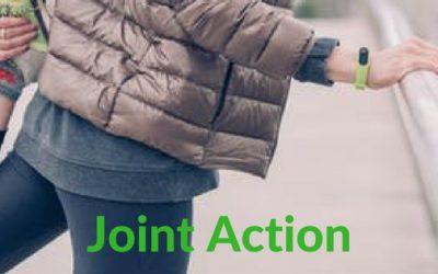 Joint Action Turmeric Formula