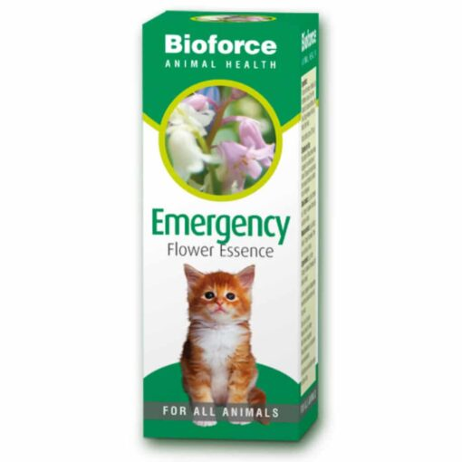 Emergency Flower Essence for Pets
