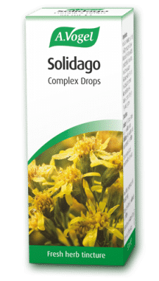 solidago 50ml complex