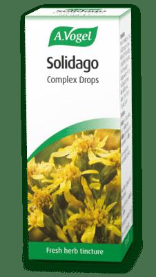 solidago-50ml