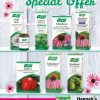 Santasapina bonbons avogel winter offer